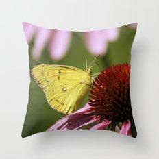 Clouded Sulphur Butterfly Throw Pillow