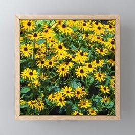 Sun Flowers Framed Mini Art Print