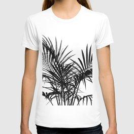 Little palm tree in black T-shirt