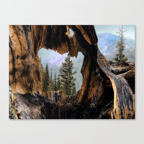 Look Into The Heart Canvas Print