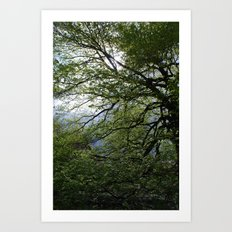 Before the Rain Art Print