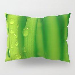 Green grass  32 Pillow Sham