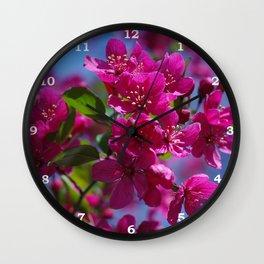 Rosy spring crabapple blossoms - Malus 'Prairifire' Wall Clock