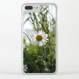 Irish daisy Clear iPhone Case