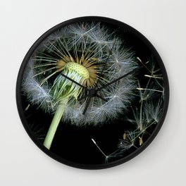 Dandelion Seeds Blowing in the Wind, Scanography Wall Clock