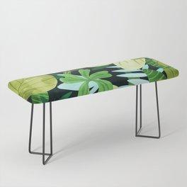 Rainforest    Bench