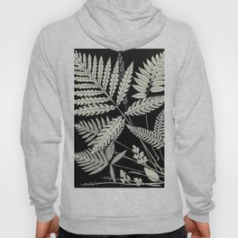 Ferns and evergreens of New England-Edward Knobel - 1895 Leaves Black & White Ink Pattern Hoody