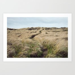 Oregon Dune Grass Adventure - Nature Photography Art Print
