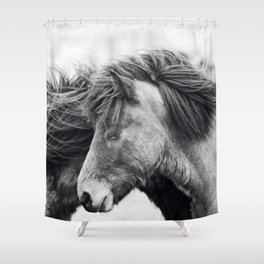 Icelandic Horse Photograph in Black and White Shower Curtain