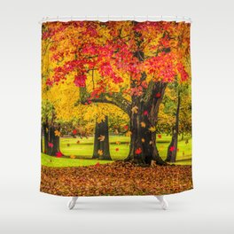 Autumn City Park Scene Shower Curtain