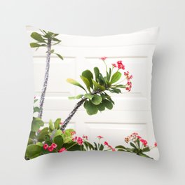 Blooming Crown of Thorns Throw Pillow