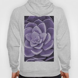 succulent Blossom violet color Hoody