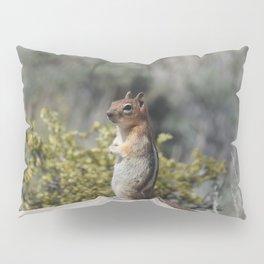Woodland Cutey Pillow Sham