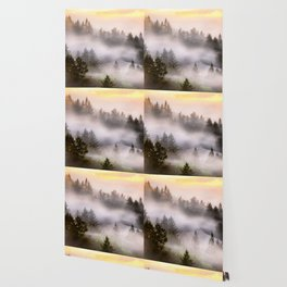 Misty Mount Tamalpais State Park Wallpaper
