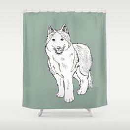 Sketch of siberian malamute Shower Curtain