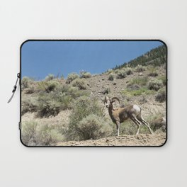 Bighorn Sheep 01 Laptop Sleeve