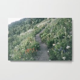 Happy Trails XIII Metal Print