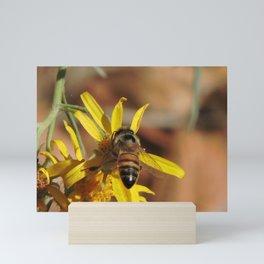Desert Sunflower Pollen Picker Mini Art Print