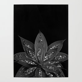 Gray Black Agave with Black Silver Glitter #2 #shiny #tropical #decor #art #society6 Poster