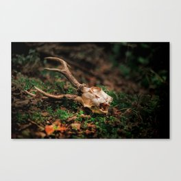 HUNTING SEASON IS OVER. Canvas Print
