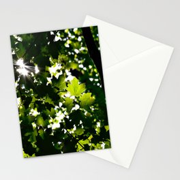 Green Maple Leaf PattrnTree Leaves Parallax Sunshine Shows Leaves Green Color Stationery Cards