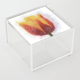 Tulip Painting Acrylic Box