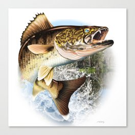Walleye Art, Decor and Gifts Canvas Print