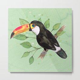 Toco toucan Metal Print