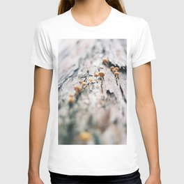 Forest Finds - III T-shirt