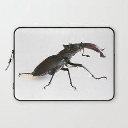 Stag beetle Laptop Sleeve