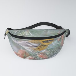 A Townsend's Warbler Spruces Up Fanny Pack