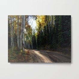 Mountain Aspen Autumn Road Metal Print