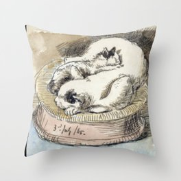 Mama Cat with Kitten in a Wicker Basket Throw Pillow