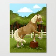 Trick Horse Canvas Print