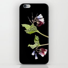 Comfrey iPhone Skin