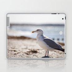 photogenic Laptop & iPad Skin
