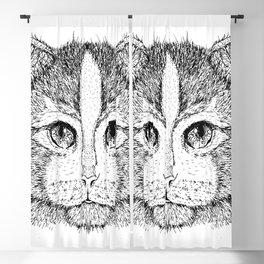 Cat 9 Blackout Curtain