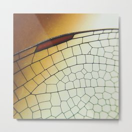 Golden Dragonfly Wing Metal Print