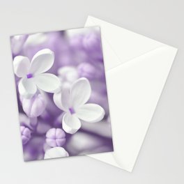 Lilac 167 Stationery Cards
