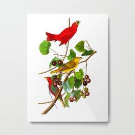 Summer Red Bird Metal Print