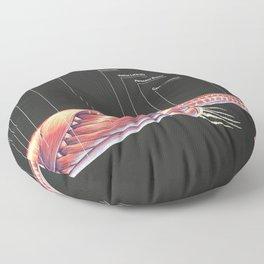 Tylosaurus Pembinensis Muscle Study Floor Pillow