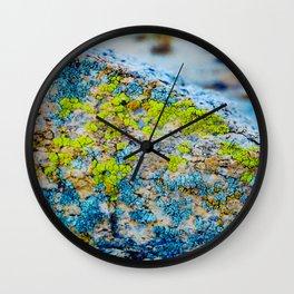 Hyper Lichen on Cool Desert Rock Wall Clock