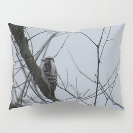 This beautiful little Downy Woodpecker Pillow Sham