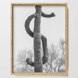 Dollar Saguaro, Black and White Desert Cactus Art by Murray Bolesta Serving Tray