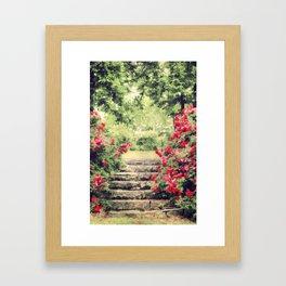 The Rose Garden Framed Art Print