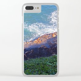 Sea Lion Caves Clear iPhone Case