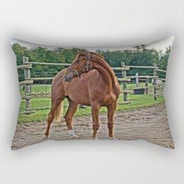 Something Behind Me Rectangular Pillow