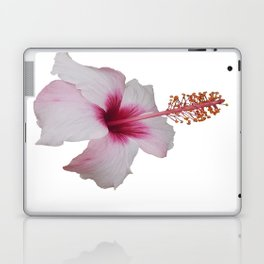 Pale Pink Hibiscus Tropical Flower No Text Laptop & iPad Skin
