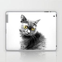 Muimui 4 Laptop & iPad Skin