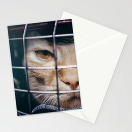 Le hockey cat - 10th life Stationery Cards